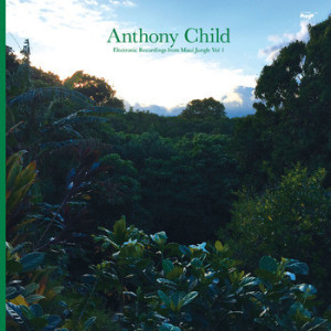 ELECTRONIC RECORDINGS FROM MAUI JUNGLE VOL 1